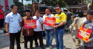 CCAI Serahkan Hewan Kurban Dua Daerah Di Jawa Barat