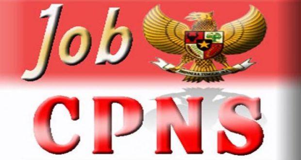 JOB CPNS, Berikut Tata Cara & Persyaratannya