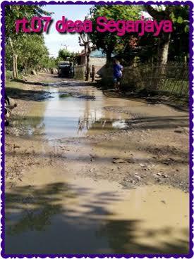 Sudah Puluhan Tahun, Jalan Desa Segarjaya – Karawang Dibiarkan Rusak
