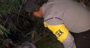 Mayat Siapa? Dia Mengapung Di Kali Dekat Kampung Nambo