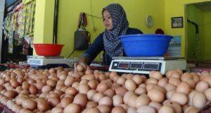 Jelang Tahun Baru, Harga Telur Terus Melejit