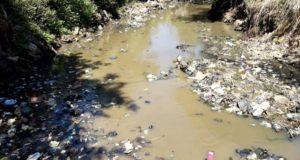 Hanya Ikan Sapu-sapu Yang Sanggup Hidup di Sungai Cikeruh